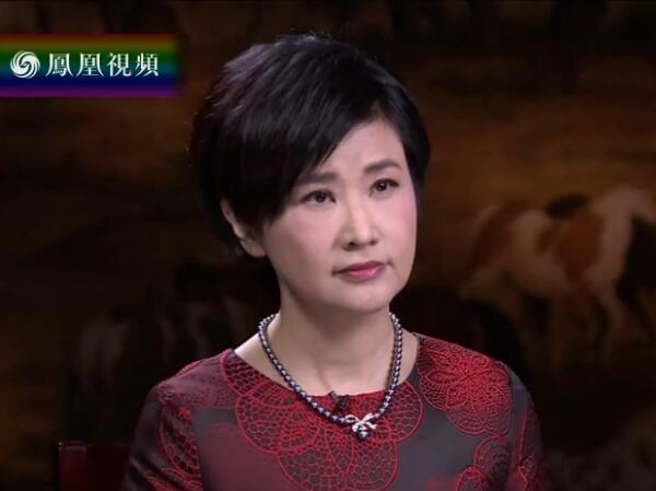 凤凰卫视《问答神州》吴小莉专访国家文物局局长刘玉珠,谈文物保护工作